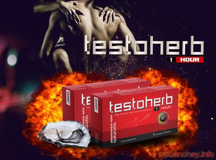 mua testoherb 1h ở đâu