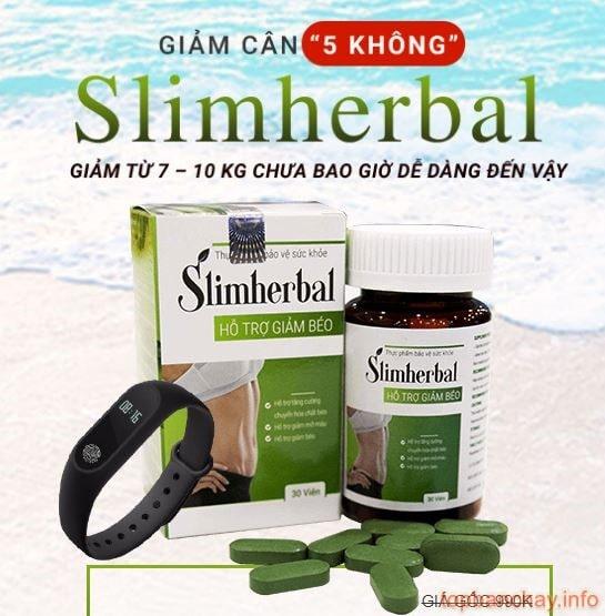 slimherbal có tốt không