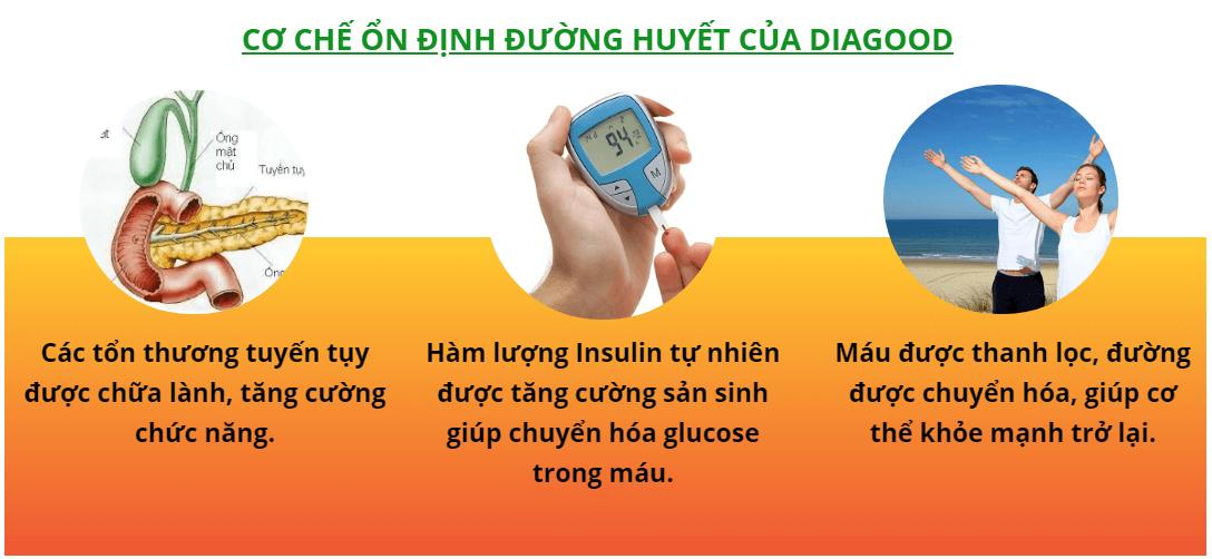 cơ chế ổn định đường huyết của Diagood