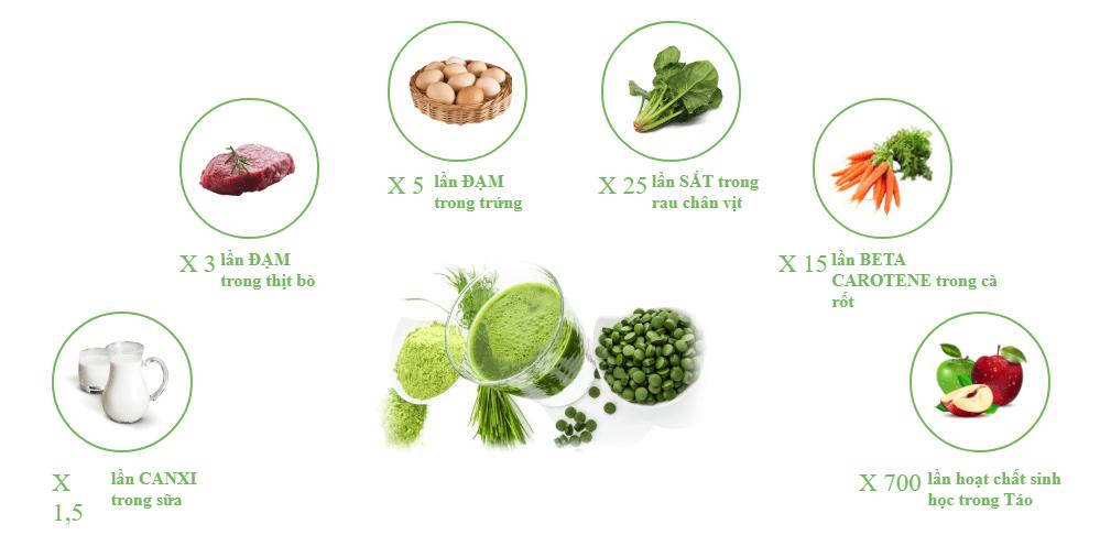 giá trị dinh dưỡng của tảo Nhật
